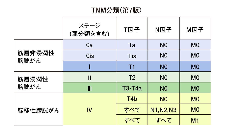 TNM分類(第7版)