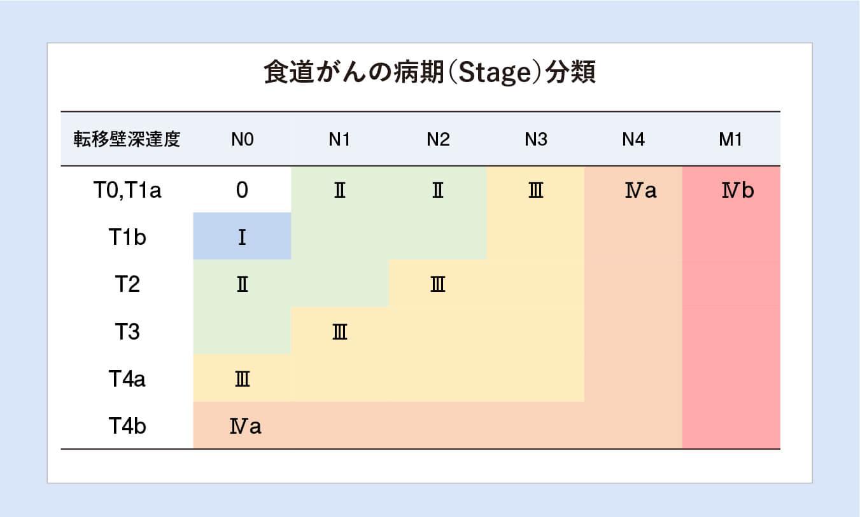 食道がんの病期(Stage)分類