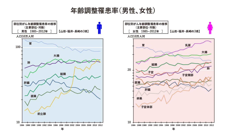 年齢調整罹患率(男性、女性)
