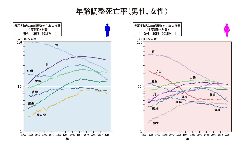 年齢調整死亡率(男性、女性)